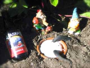 Garden Slugs vs. Garden Gnomes