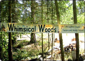 Whimsical Woods Banner