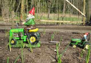 "Gnome on a John ""Beer"" Tractor"
