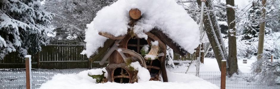 birdhouse_2_NEW